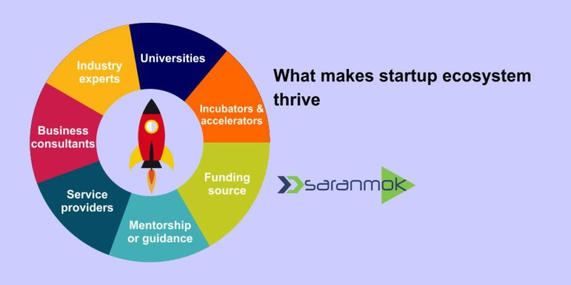 What makes startup ecosystem thrive